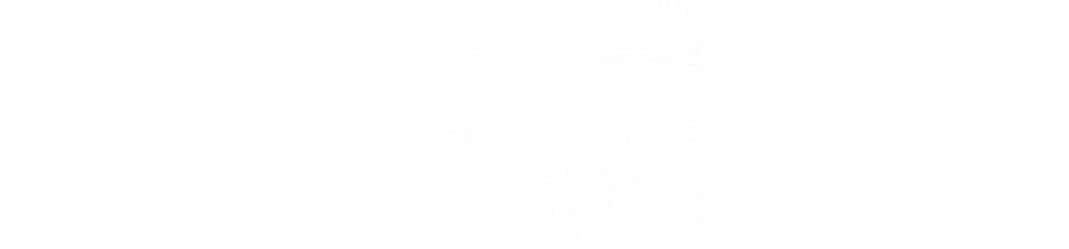 The Q Report Logo